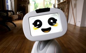 Meet Buddy – a cute family companion robot