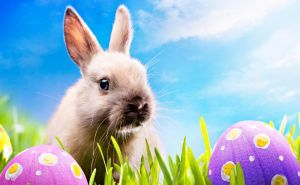 Easter Is Coming: Get the Right Mood